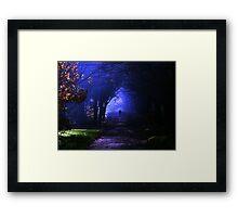 Into the shadows Framed Print