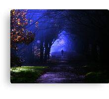 Into the shadows Canvas Print