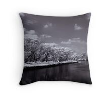 Benumbed Throw Pillow