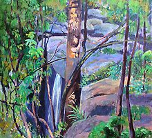 Waterfall St.Bernards on the Mountain by Virginia McGowan