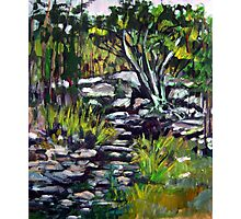 creek bed Photographic Print