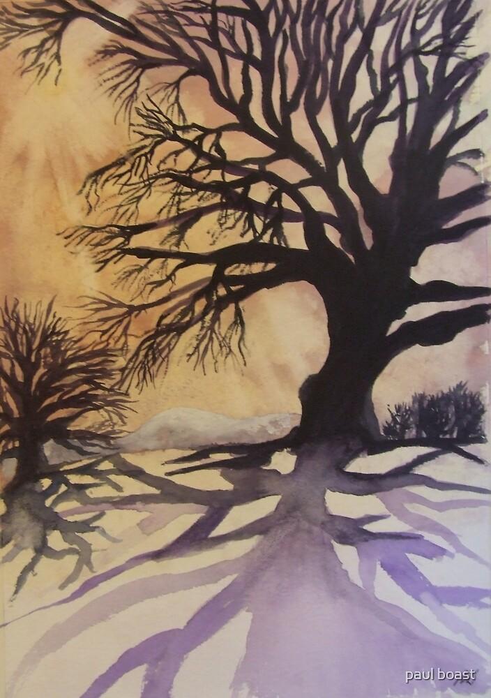 Winter Tree Shadows by paul boast
