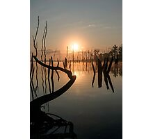 Sunrise over Manasquan Reservoir II Photographic Print