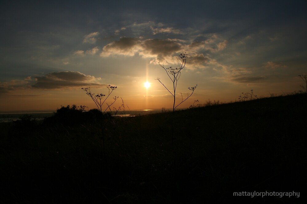 dark view by mattaylorphotography