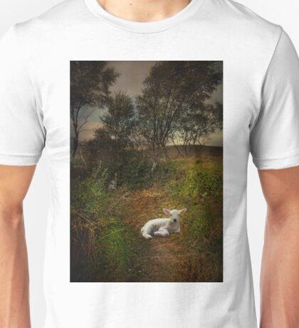 A young lamb on Rannoch Moor Unisex T-Shirt