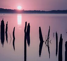 Sunrise over Manasquan Reservoir IV by Debra Fedchin