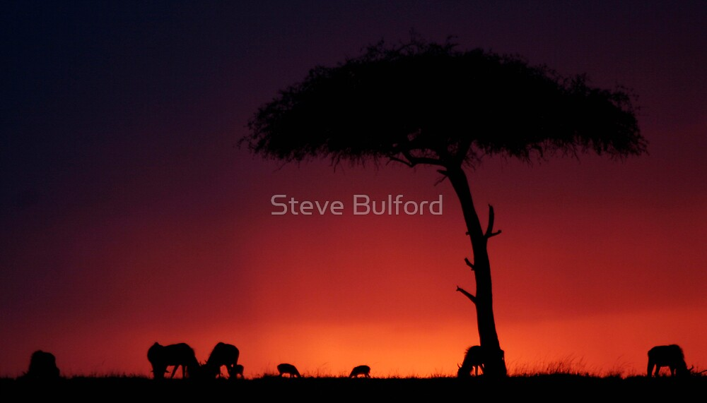 Mara Sunset by Steve Bulford