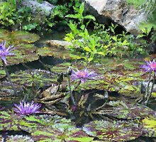 Painted Lily Pond by Diane Blackford