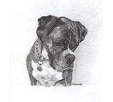 Tyson - graphite Photographic Print