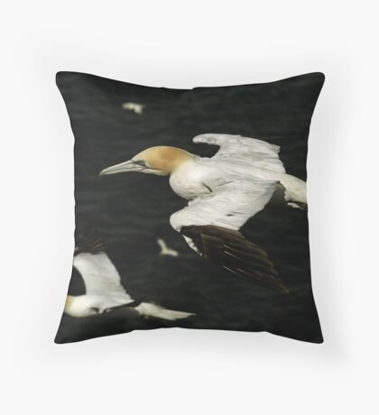 Fly-by Throw Pillow