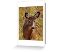 Sunshine in my eyes (unframed) Greeting Card