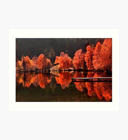 Trees vs Trees Art Print