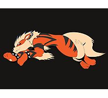 Cool Running Arcanine  Photographic Print
