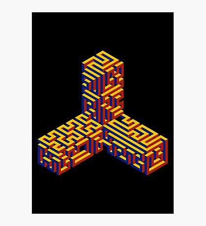 Caltrop Maze Photographic Print