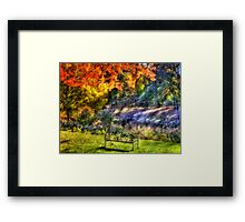 Park Bench Framed Print