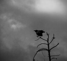 Nevermore by RKastl