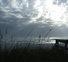 Silver lights and sea oats by Cyndi Jamerson