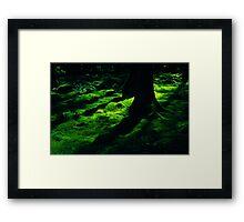 irish green Framed Print