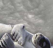 Grey Dream Day by Robert  Anthony