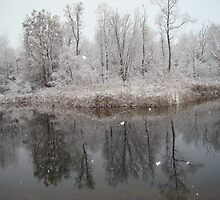 first snow 2007 by anita evans