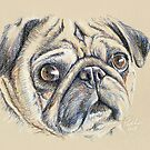 Oh My Pugness Me! by Paul-M-W