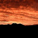 Desert Sunset In Red by Daniel J. McCauley IV
