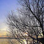 Late March Sunset On Inch Island...........................Ireland by Fara