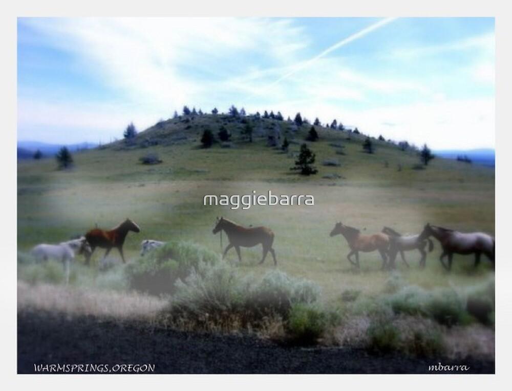 Spirits Pure by maggiebarra