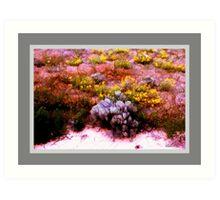 Desert Wildflowers and Sagebrush Art Print