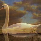 Dreamland - White swan collage by NicoleBPhotos