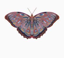 Fantasy Butterfly Neon by Randy Gentry