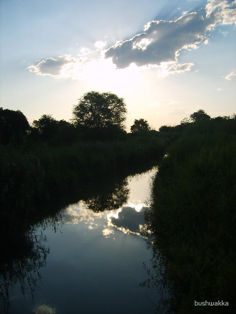 Water on water by bushwakka