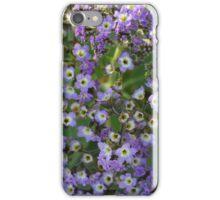 Many Purple Little Flowers iPhone Case/Skin