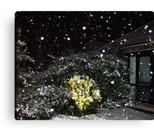 falling snow flake hearts Canvas Print