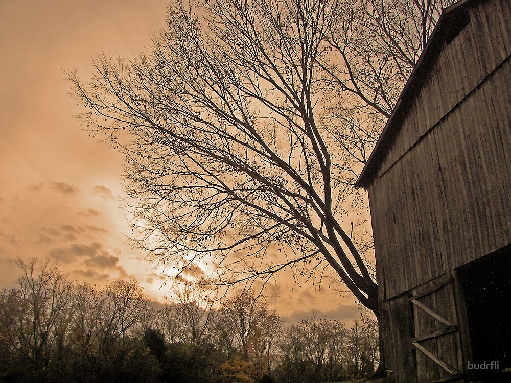 behind the tobacco barn by budrfli