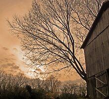 behind the tobacco barn by budrfli