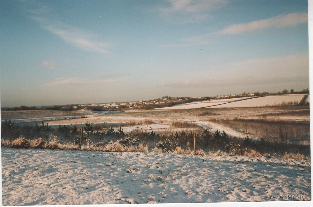 Wintertime  in a Leicestershire country park by irene garratt