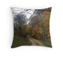 slice of autumn Throw Pillow