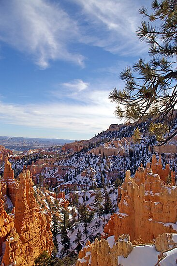 Bryce Canyon #1 - USA by Paul Gilbert