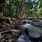 Lord of the Rings River by Robert Mullner