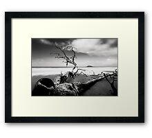 RIP in Cape Tribulation Framed Print
