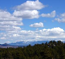 Blue Sky's of Colorado  by Stephanie  Triplett