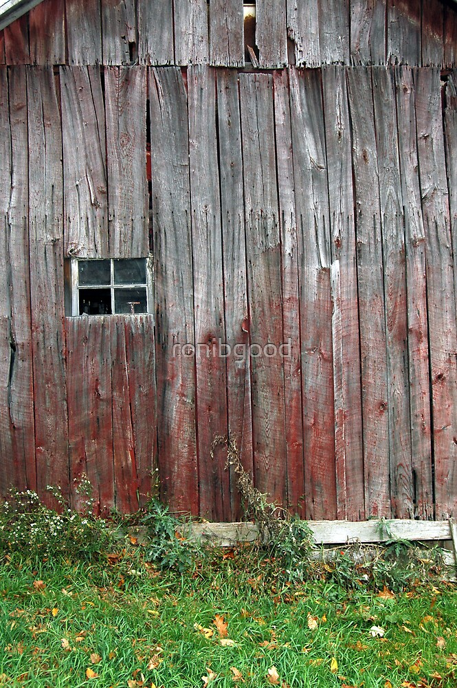 Barn Wall by ronibgood
