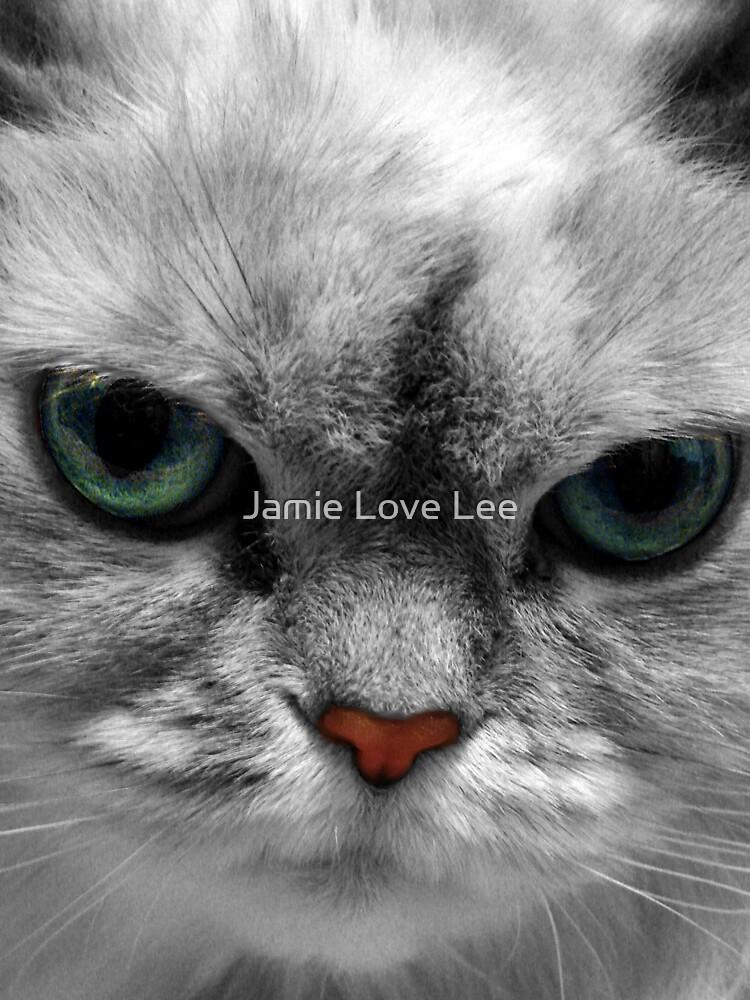 Kitty by Jamie Lee