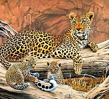 Leopard and cubs resting by Mutan