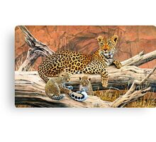 Leopard and cubs resting Canvas Print