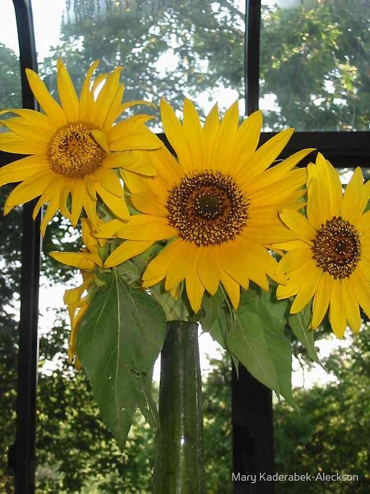 Sunroom Sunflowers by Mary Kaderabek-Aleckson