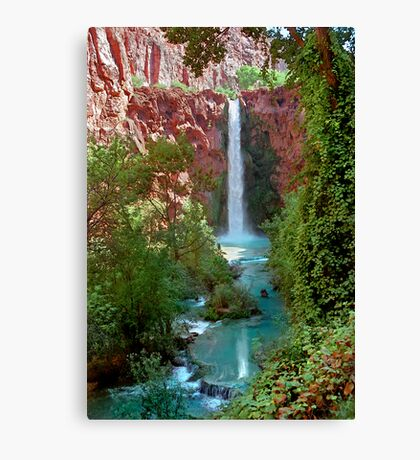 Moony Falls and Tree Canvas Print