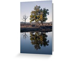 Reflections study 1 Greeting Card