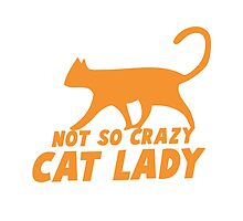 Not so CRAZY cat lady! by jazzydevil